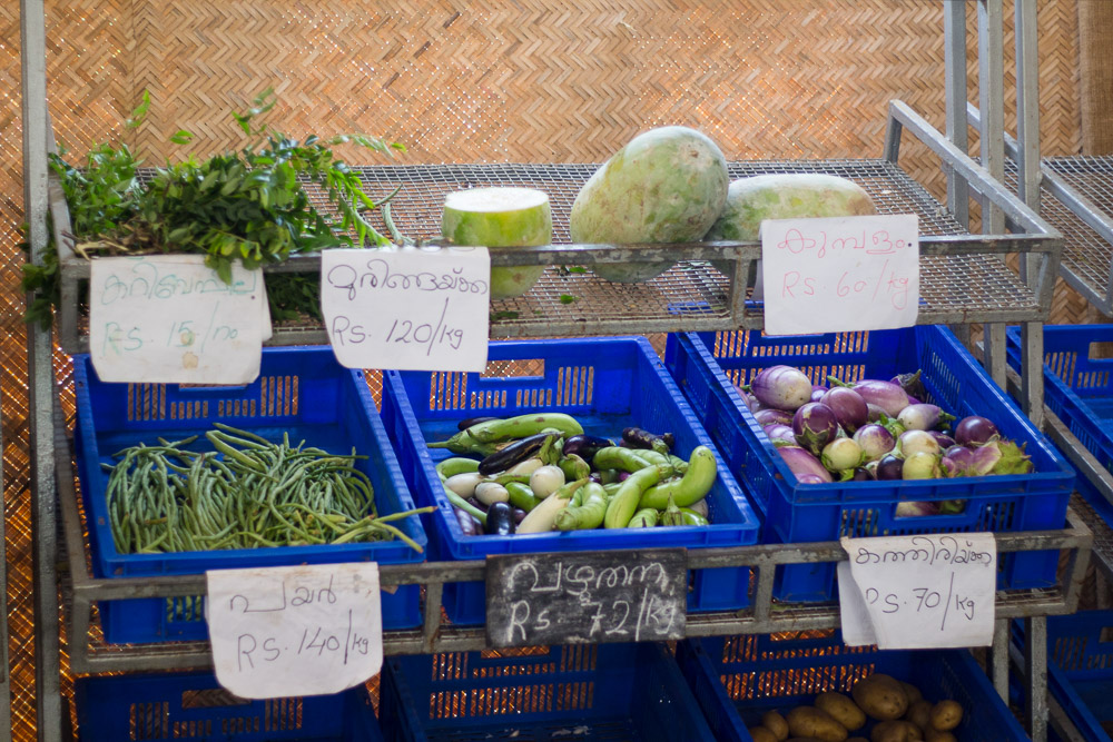 The photo shows the two upper shelves, and the corner of a third, of a metal grating shelf displaying a variety of vegetables. On the uppermost shelf are bunches of leaves on the left side, while the middle and right sides hold light green oval fruits about the size of melons. The shelf below has products organized into three navy blue crates. From left to right, the vegetables are: string beans, a mix of squashes and eggplants, and purple onions. In the part of the third shelf that is visible are potatoes sitting in another navy blue crate. In front of each product is a piece of paper with the price and name of the product, written in the region's local Indian dialect.
