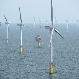 Tall, white wind turbines, installed in rows in the middle of the sea. In the background, a blue-gray sky.