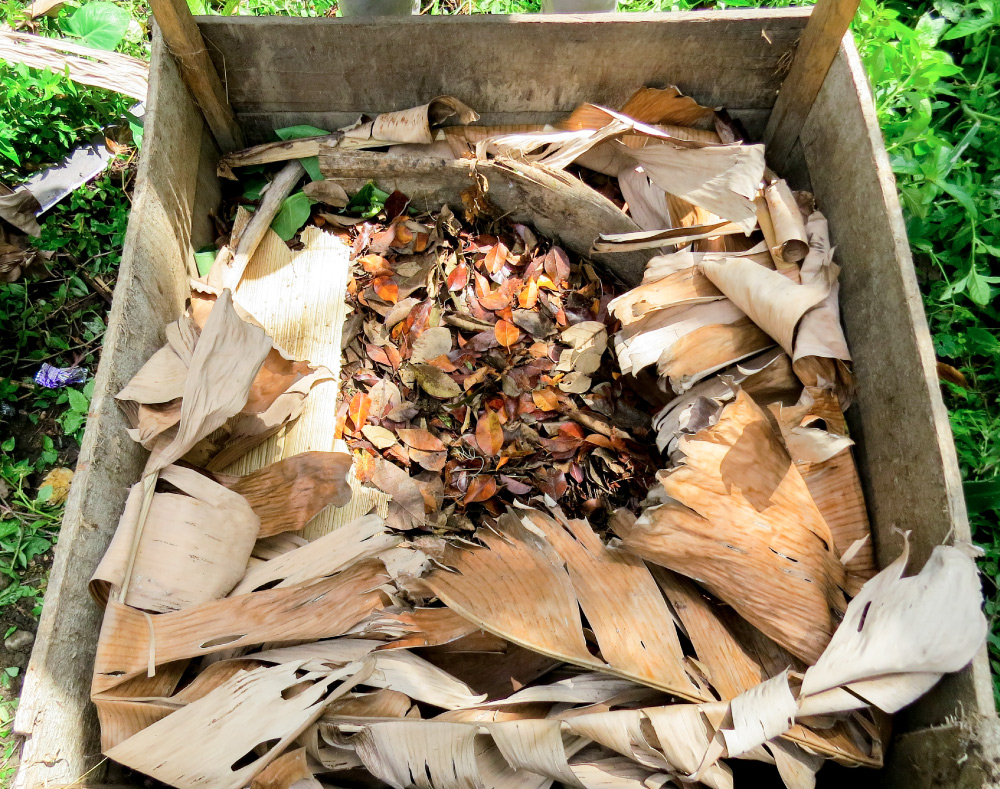 A square on the ground bordered by wooden slats has large dried leaves surrounding smaller bits of organic material.
