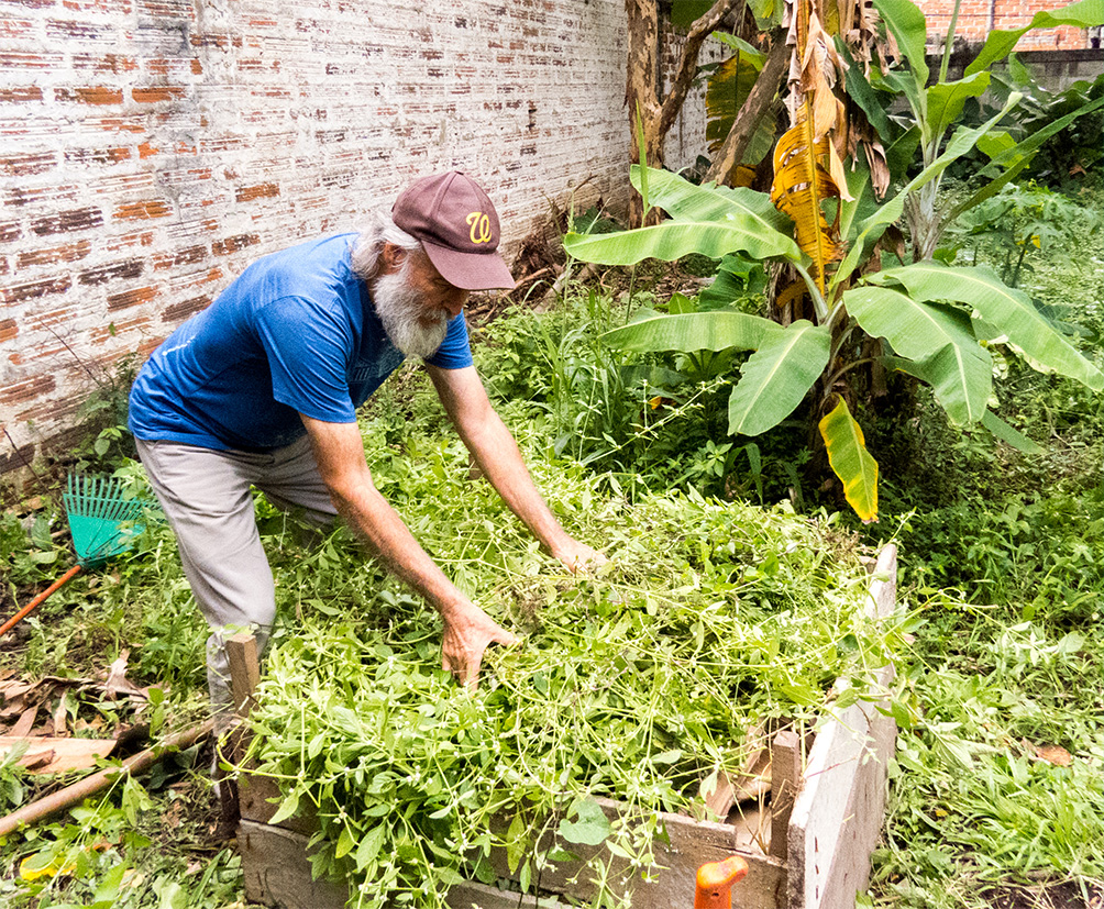 The same older man from the cover photo, with white skin and full white beard and moustache, is grabbing a bunch of thin green branches, full of leaves. He is facing the right side of photo and wears a brown cap, a blue t-shirt, and light gray pants. He is surrounded by bushes and low foliage.