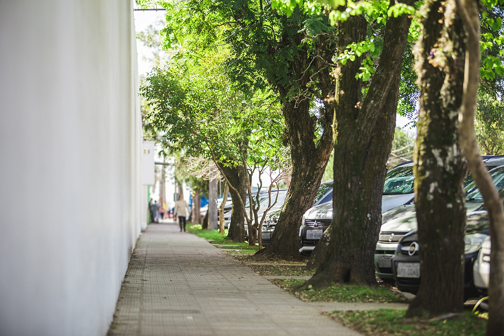 A sidewalk running towards the back of the photograph, with a white wall to its left and a row of trees with light green leaves and thick trunks to its right. Passersby can be seen in the back, out of focus.