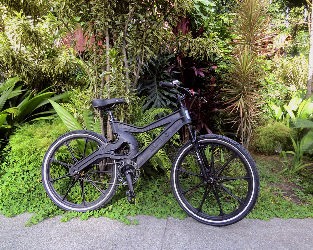 The same black bicycle from the cover photo is facing the right side of the photo, and is resting against a small tree, with asphalt in front of it and a yard with various small trees in the back.