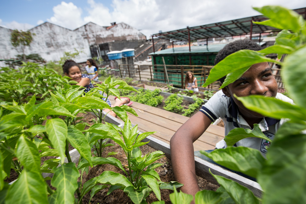 The photo shows two children, on the roof ecoproductivo, behind several plant changes