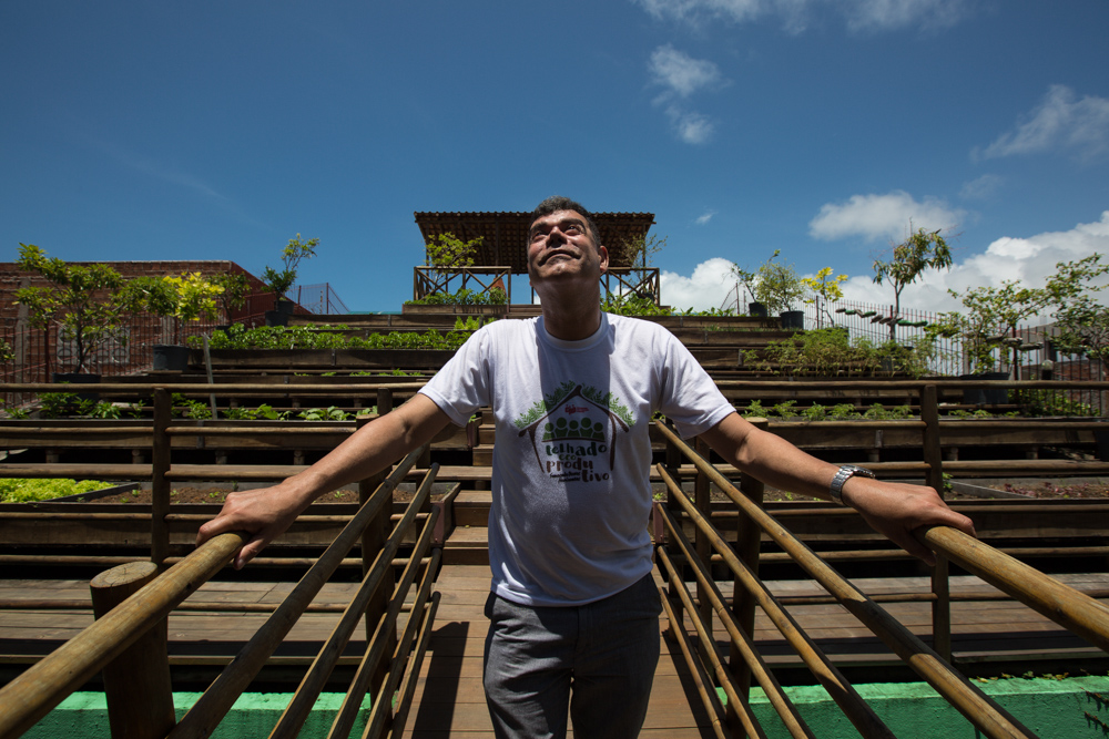 The photo shows a white, gray-haired man looking up at the blue sky. Behind the ecoproductive roof with several vegetable gardens.