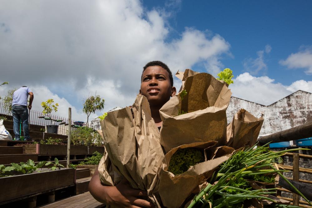 Na foto, vemos um menino negro segurando vários pacotes de papel com hortaliças. Ao fundo, o céu azul.