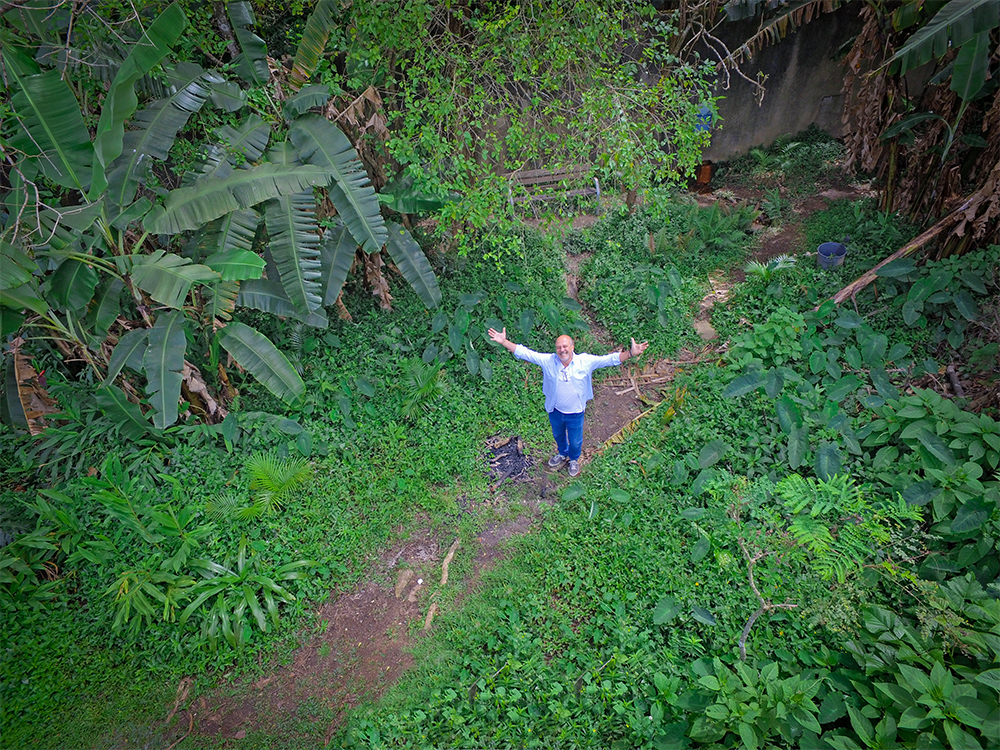 An aerial picture of a man looking upwards with open arms. He is surrounded by greenery (trees and plants).