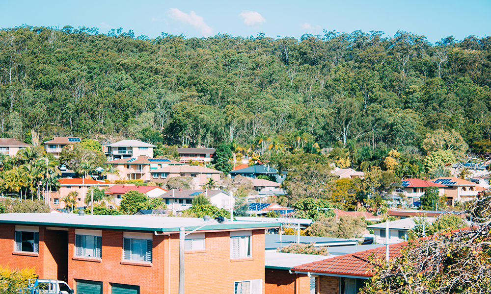 The picture shows a wooded area surrounded by more than 20 houses, from where we can see photovoltaic boards installed in their roofs.