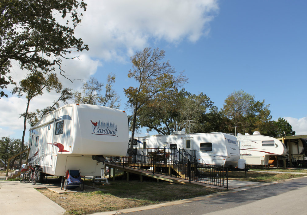 There are three large white motorhomes parked next to each other. They are surrounded by trees.