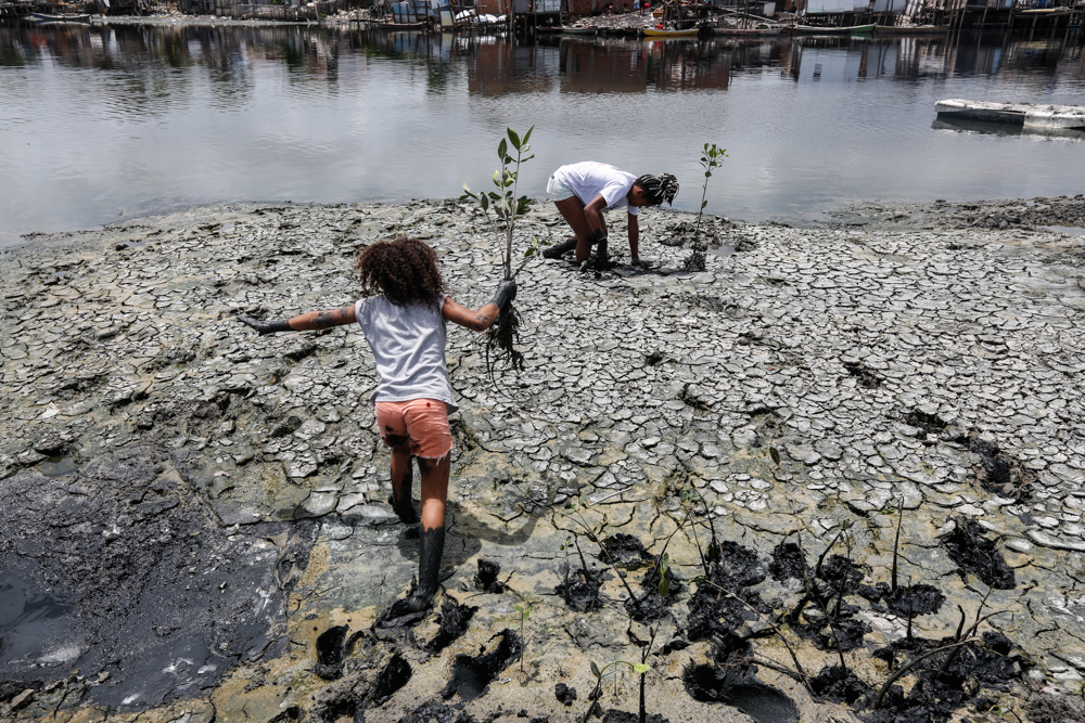 A girl has her back to the camera; her legs and hands are muddy and she is running through the mangrove with a plant seedling in her hands. By the water, another young woman crouches, planting another seedling in the mud. In the background, houses are reflected in the black river