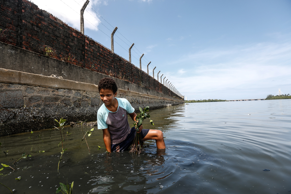 A black boy wearing a blue and gray T-shirt and shorts is standing in the shallow water with several seedlings in his hands. There is a brick wall fortified by a stone foundation in the background. The water is dark, and the sky is blue.