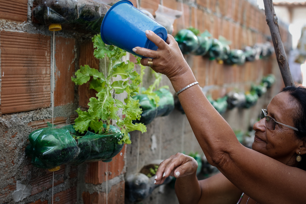 A wall is lined with several rows of plastic bottles. There are seedlings growing in the bottles. A woman with dark hair, wearing glasses, her nails painted white, is watering the plants, using a blue plastic container.