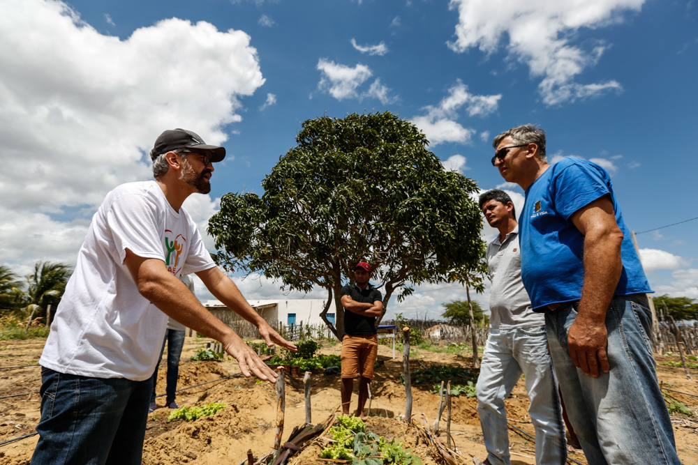 A white man with a beard and gray hair. He is wearing a black cap, white t-shirt and jeans. He is standing in front of a small vegetable garden. He is gesturing toward the vegetable garden, using both hands, while talking to three other men. In the background are other vegetable gardens and a blue sky. In the middle of the scene, just behind one of the men, is a tree with many branches and green leaves