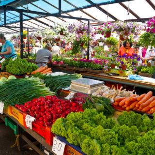 La foto muestra una feria al aire libre con varios puestos de frutas y verduras, donde hay lechuga, ciruela, cebolla de verdeo, cebolla, zanahoria, col, naranja, ajo, y, en el fondo, también hay macetas con flores.