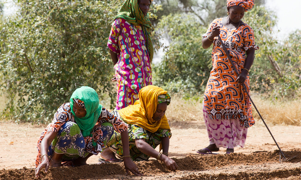 Four black women are wearing long, patterned, full-colored dresses. All of them also wear colorful scarves tied around their heads. In the background is a sandy area with trees. Two of the women crouch on the ground planting seeds, while a third tends the soil, using a long-handled garden tool. A fourth woman stands back, observing.
