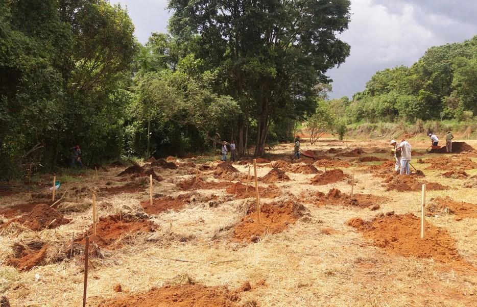 La foto muestra un gran terreno de tierra, con algunos montones de tierra excavada, donde hay clavadas estacas para delimitar el lugar en el que se ha plantado algo. Al fondo, un bosque.