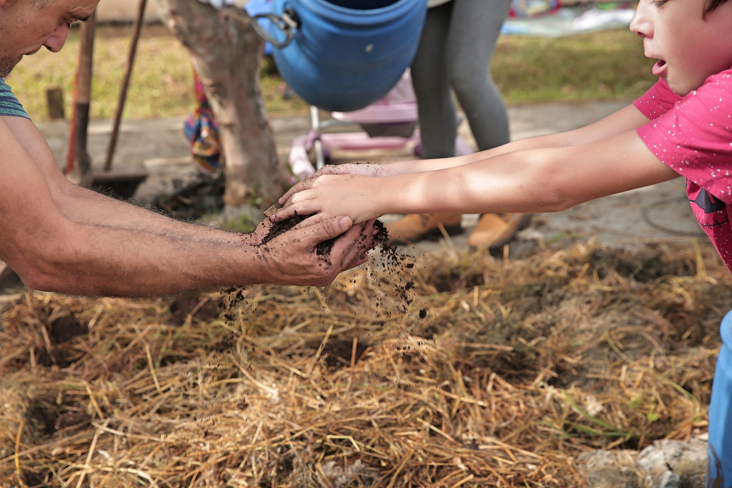 A close-up of a white child giving a handful of dirt to an adult. The picture shows only their arms and part of their faces. On the ground, dirt and straw.