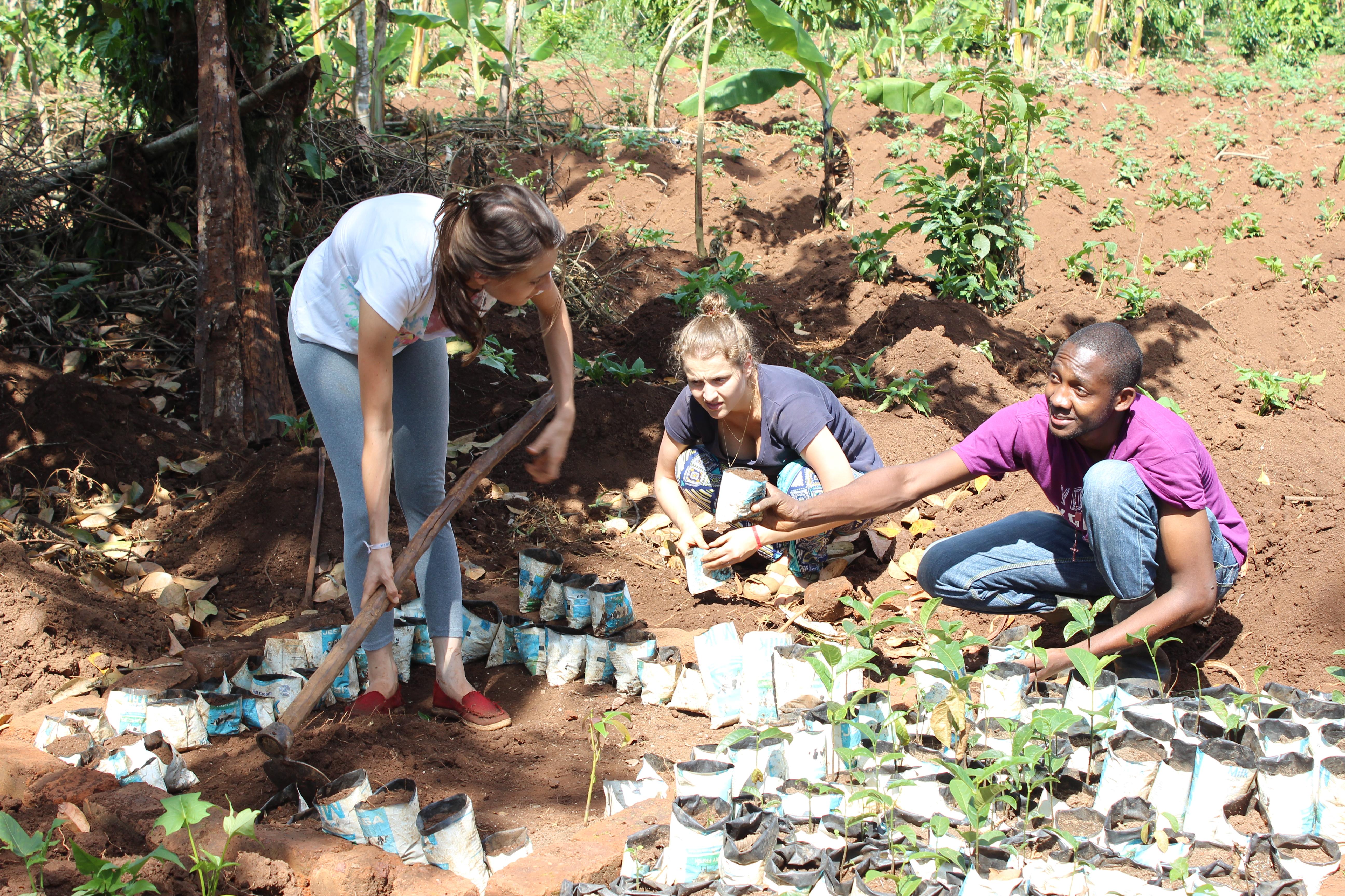 Charles Batte durante treinamento para estudantes de escolas localizadas em zonas rurais, com mutirão para plantar mudas de árvores (Divulgação/Tree Adoption Uganda)