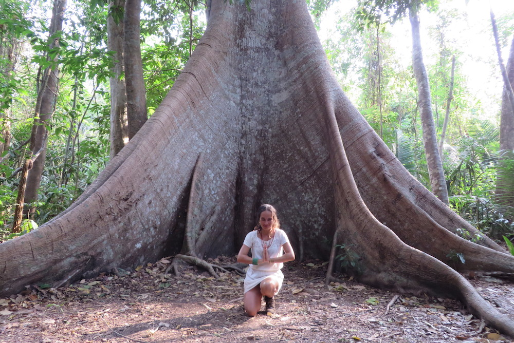 "A white woman, with blond, curly hair, wearing a short, white dress. She is kneeling, making the yogic ""namaste"" (palms of her hand together, in front of her chest) gesture. Behind her is a large, old tree trunk with thick roots which fill almost the entire picture. In the background, a green forest full of trees."