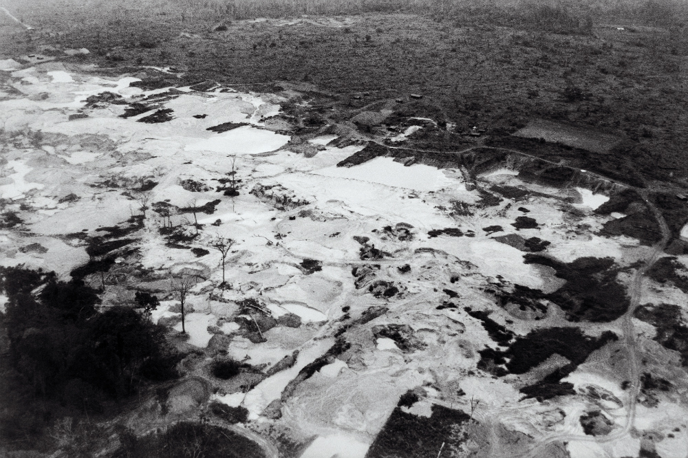 Black and white aerial photo of a forest, with a large cleared area with few remaining trees.