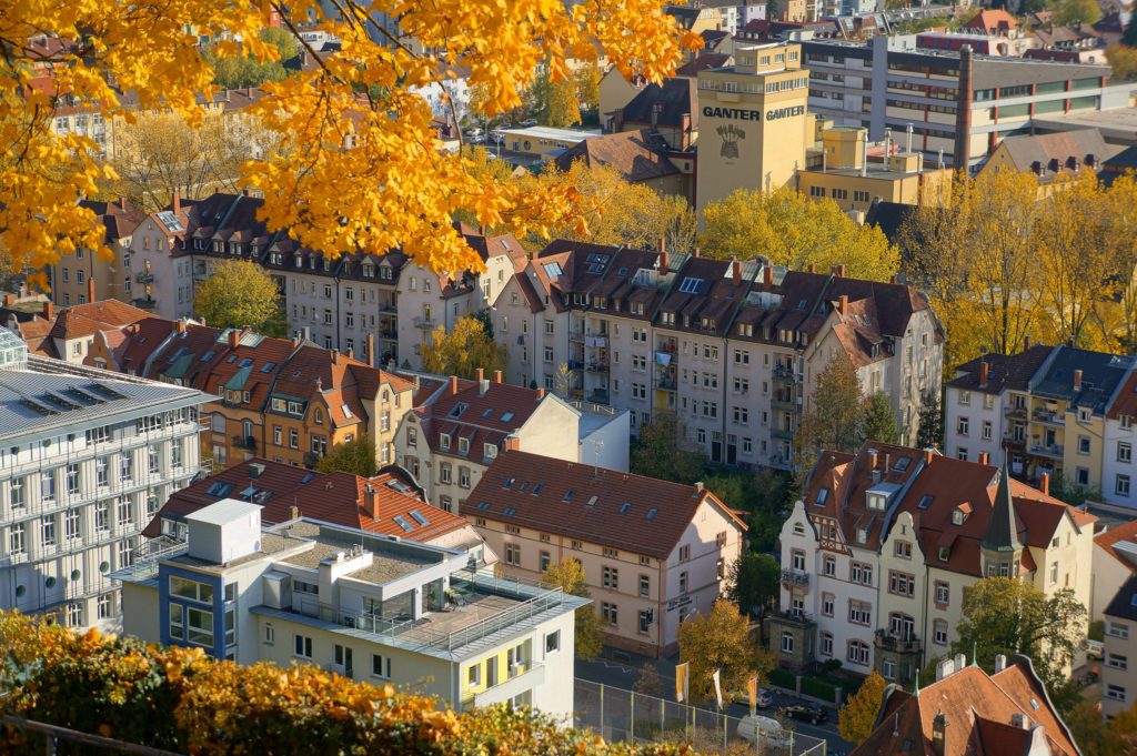 Aerial view of a city with small residential buildings. Among them, lots of trees with yellow leaves.