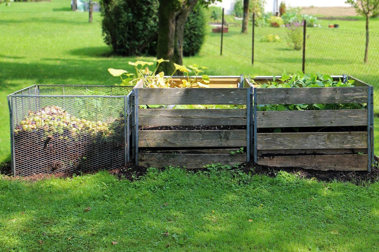 Área verde con tres cajas encima de un pasto, puestas uno al lado del otro. La caja de la izquierda, hecho de metal trenzado como tela en los lados, hace posible ver lo que está dentro, está hasta la mitad lleno de tierra, con comida y frutas en la parte superior. La caja del medio es de madera, con cuatro tiras en sus lados. Saliendo de la parte superior de la caja hay algunas plantas y hojas verdes. La tercera caja a la derecha, es igual al del medio, con cuatro listones de madera en el lado. Le salen un montón de hojas y plantas verdes. En el fondo de la foto el pasto se extiende, con algunos árboles y plantas de mediano porte.