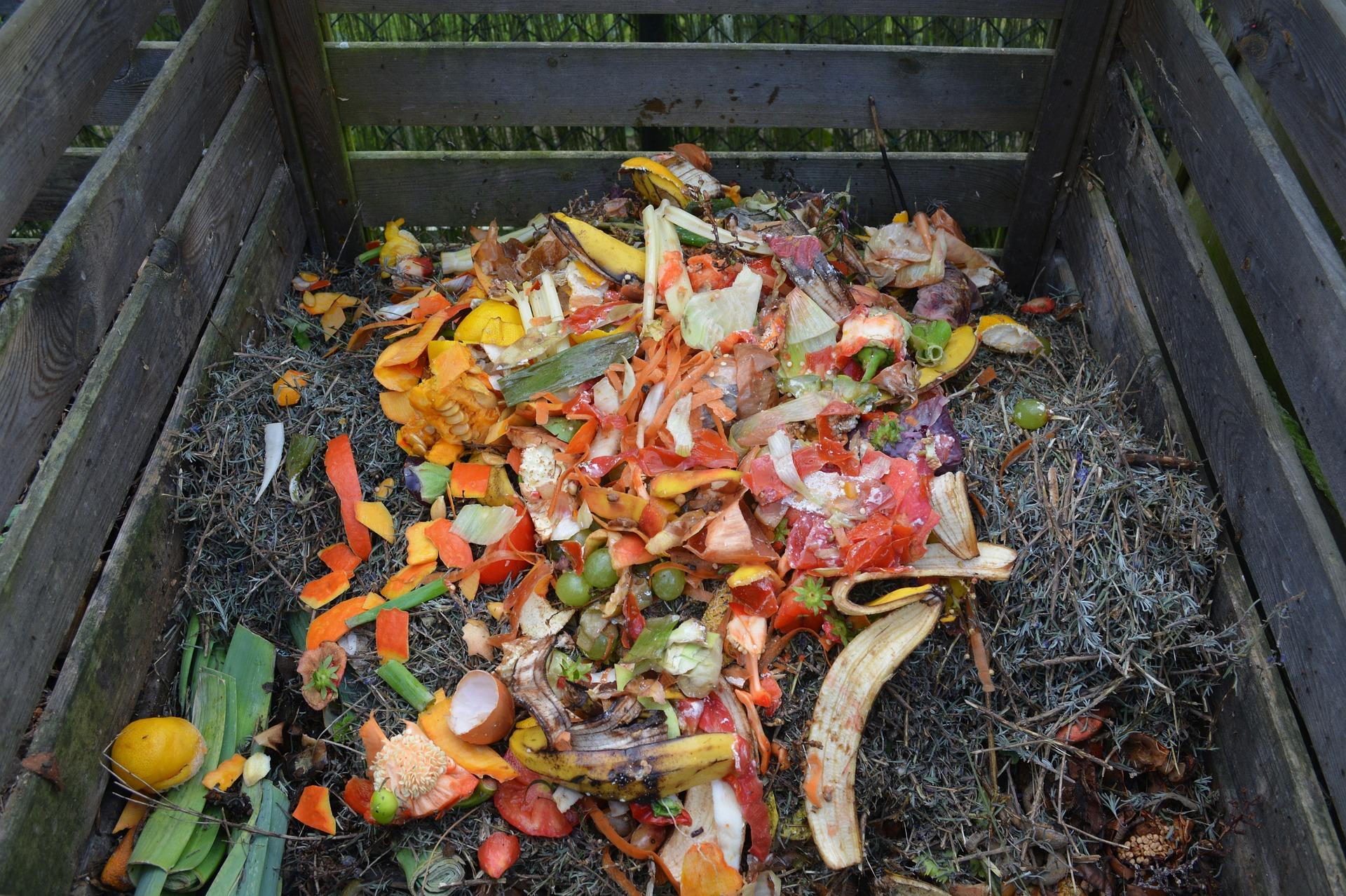 Imagem vista de cima de uma grande caixa de madeira. Material semelhante como serragem cobre toda a parte inferior da caixa, e em cima desse material está uma grande quantidade de restos orgânicos, como cascas de frutas e ovo.