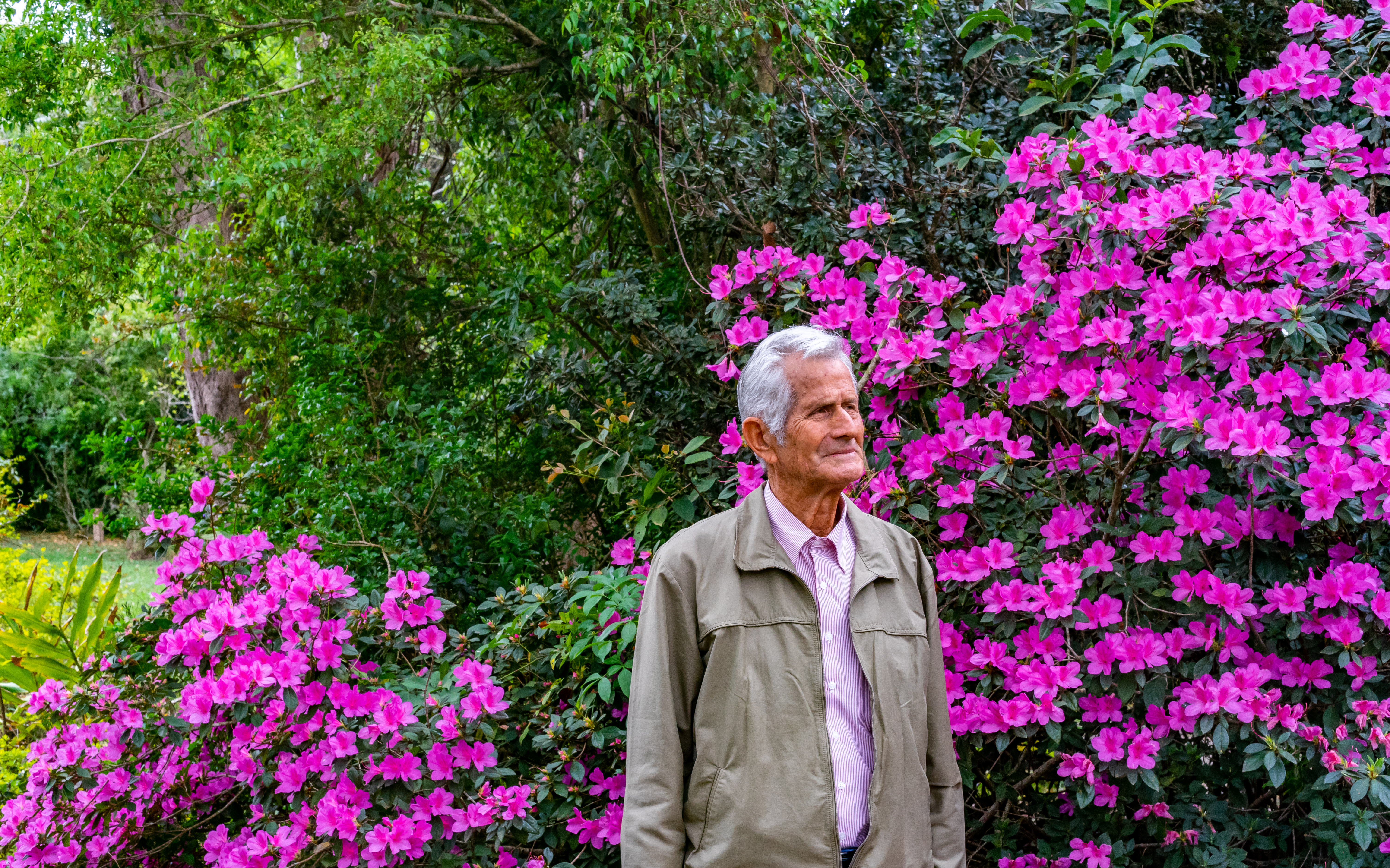 A white man, shown from the waist up, is standing in front of shrubbery with hot pink flowers and dark green leaves. He looks to his left. He has white hair and wears a light pink button-down shirt and a gray jacket.